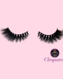 Cleopatra Lashes